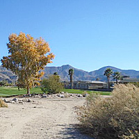 200X200_PALM_SPRINGS_LOT